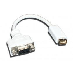 Mini Displaypoort - VGA